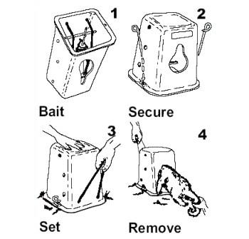 Timms possum traps • Xcluder®