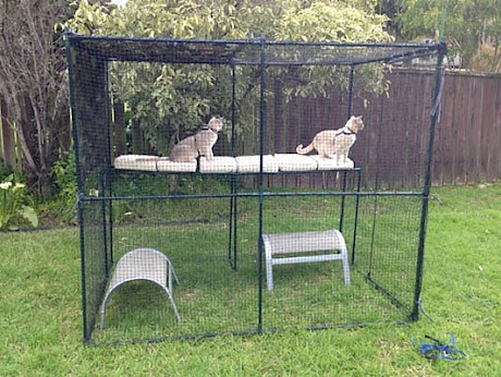 Stand-alone free-standing cat enclosures.